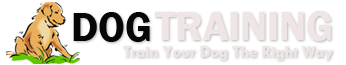 Online dog training courses – FREE online dog training guide