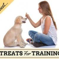 How To Use Dog Treats Correctly in Dog Training