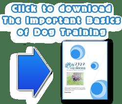 Dog-Training-Basics-FREE-download